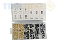Toolzone 170Pc U Clips And Screws