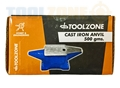 Toolzone 500G Anvil